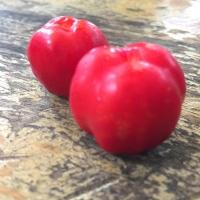 Acerola-fruit,-Brazil,-Peter-Richards-MW