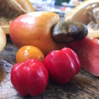 Unfamiliar-fruit,-Brazil,-Peter-Richards-MW