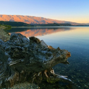 Central-Otago,-Peter-Richards-MW