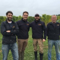 The Hattingley Valley vineyard crew, October 2016